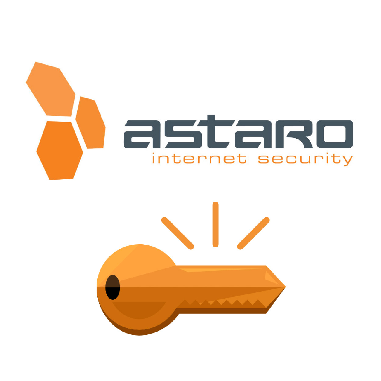 Astaro - Subscription Activation Key for AMG 1000 Mail Security ,Firewall
